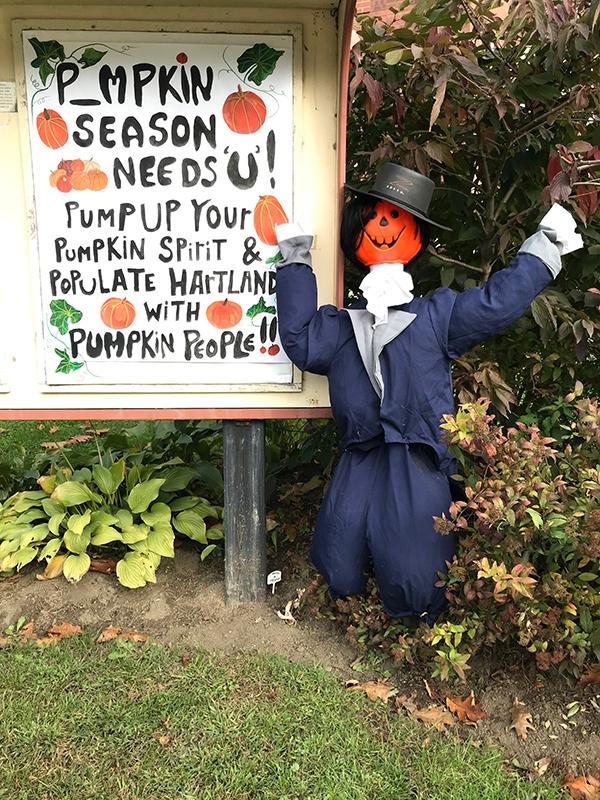 Hartland Pumpkin People